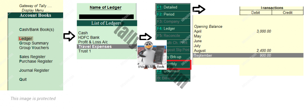 How to view monthly ledger in Tally.ERP 9?
