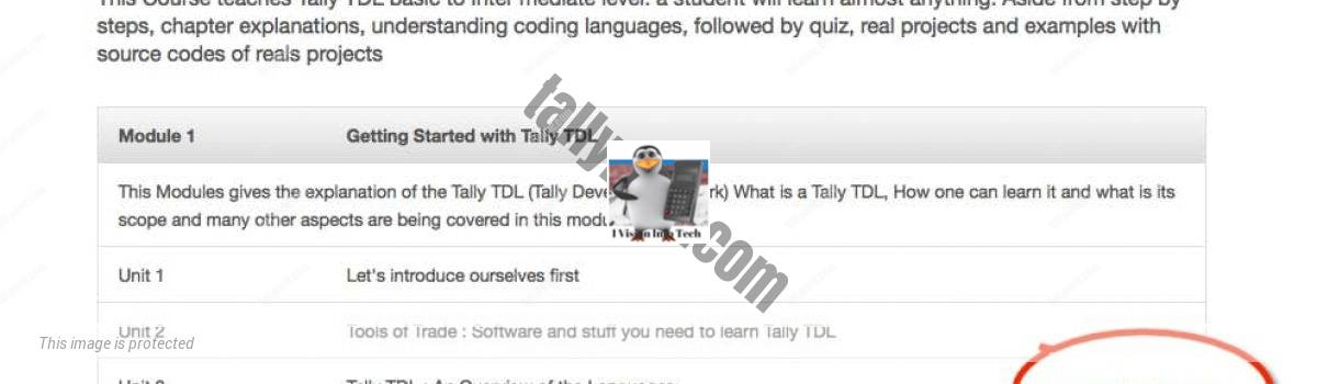 Tally TDL Course