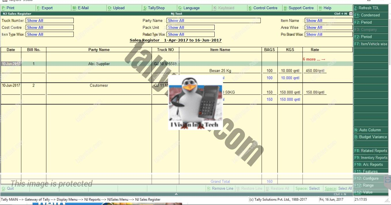 Sales register customisation in Tdl